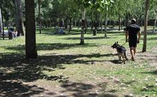 Detectan cebos para perros con agujas en el parque de la Isla