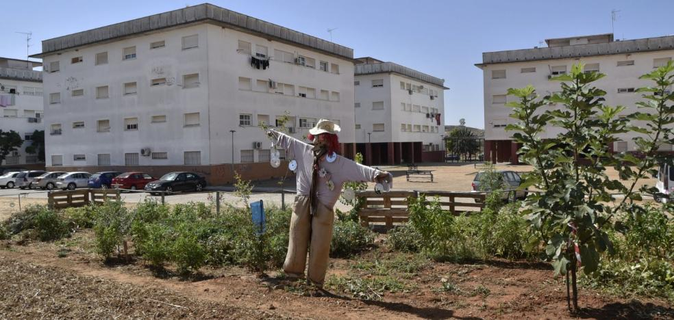 La Junta rehabilitará 90 viviendas públicas en Suerte de Saavedra