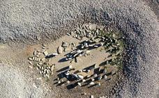 La Asociación Geológica alerta del mal estado del dolmen de Guadalperal