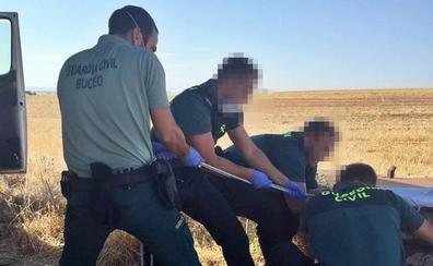 Investigan a dos vecinos de La Albuera y Talavera por matar a cuatro galgos y arrojarlos a un pozo