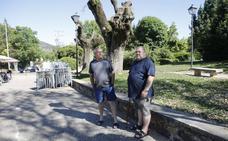 Dejar que las mascotas defequen junto a un árbol se sancionará con 750 euros