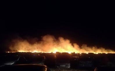 El Seprona investiga los 11 incendios de mayo y junio en el cinturón urbano de Cáceres