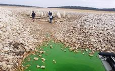 El agua entra en el dolmen de Guadalperal, al tiempo que en Navalmoral se pide que se salve