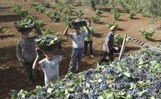 Los agricultores extremeños reciben 529 millones del Feaga hasta el 31 de agosto