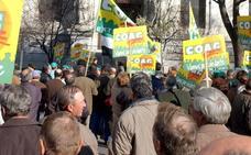 Las organizaciones agrarias quieren que los olivareros se manifiesten en Madrid