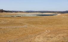 Las asociaciones agroganaderas reclaman a Agricultura medidas contra la sequía