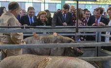 El Gobierno estudia reducir los impuestos a los afectados por la sequía en Extremadura