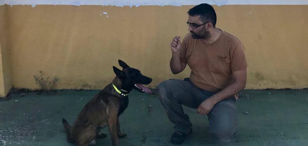 El centro de protección animal de Badajoz abre sus puertas este domingo para buscar voluntarios