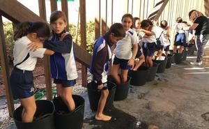 Medio millar de escolares aprenden en Almendralejo lo que es la vendimia