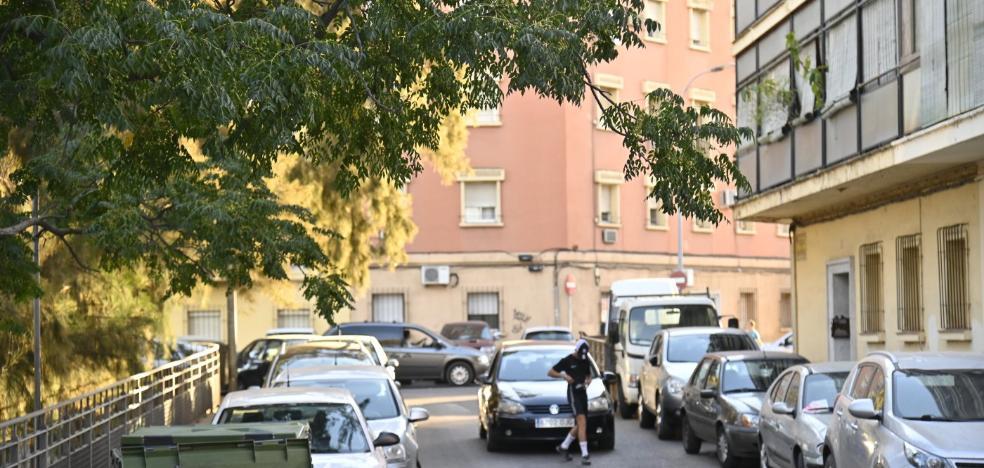 Los vecinos del barrio pacense de Santa Marina exigen que poden los eucaliptos de la zona