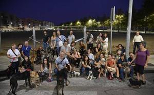 El Ayuntamiento de Badajoz precinta un solar usado como parque canino en el Cerro del Viento