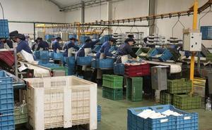 La creación de empresas se mantuvo en agosto en Extremadura y cayó a nivel nacional