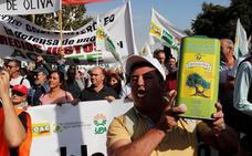 Miles de olivareros piden en Madrid que «no se juegue» con los precios del aceite