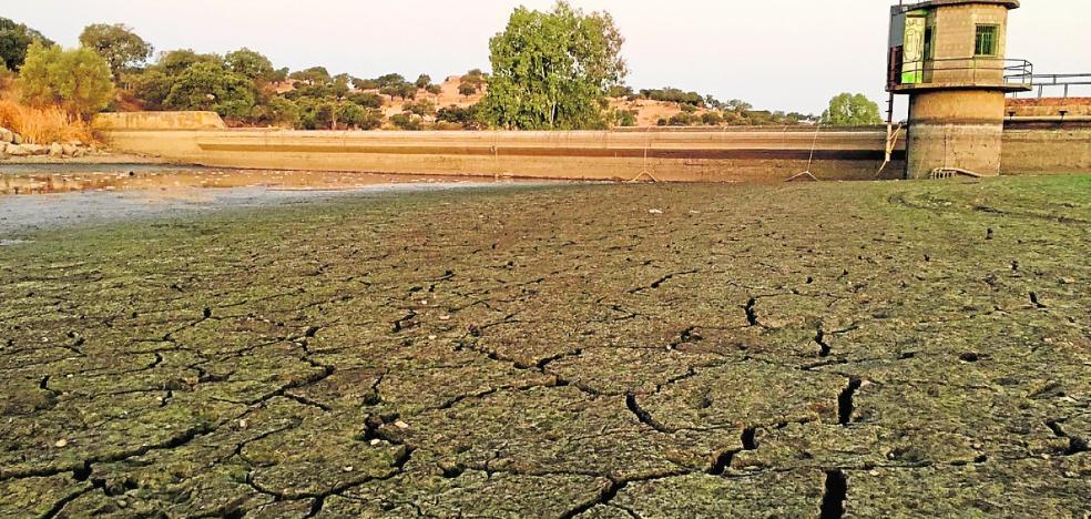 La Junta invierte medio millón de euros en obras urgentes contra la sequía