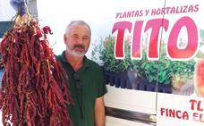«Existen alternativas al cultivo de tabaco»