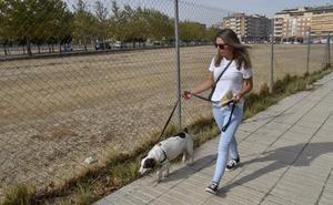 Dueños de perros pedirán aprovechar la parcela vacía del Cerro del Viento de Badajoz
