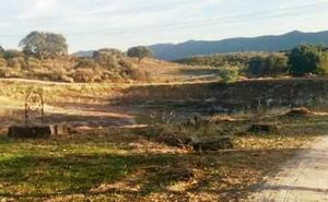 Denuncian talas desproporcionadas de árboles en Belvís de Monroy
