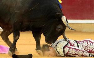 El banderillero Mariano de la Viña sufre una gravísima cogida en Zaragoza