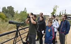 La ornitología despierta en Badajoz
