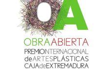 Obra Abierta 2019 en el centro de Las Claras