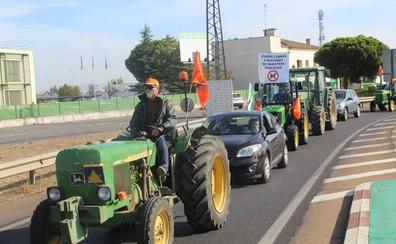Agricultores de Calamonte protestan en Mérida por los daños causados por cabras en sus fincas