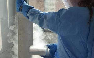 La OMS considera segura y eficaz la primera vacuna contra el ébola