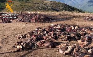 La Guardia Civil acusa a 20 personas de no llevar los restos de caza a las incineradoras