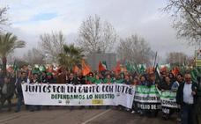 Aseprex y la Asociación Valle del Jerte se suman a la manifestación del campo del 21 en Mérida