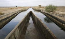 El proyecto de regadío de Tierra de Barros, a información pública