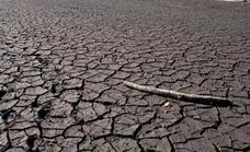 Apag Asaja denuncia el «engaño manifiesto» de Agroseguro en las valoraciones de la sequía en pasto