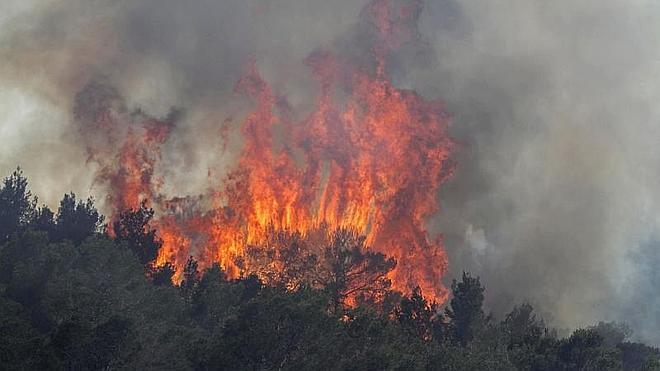 Realojan a los afectados por el incendio de Ibiza, que se da por estabilizado