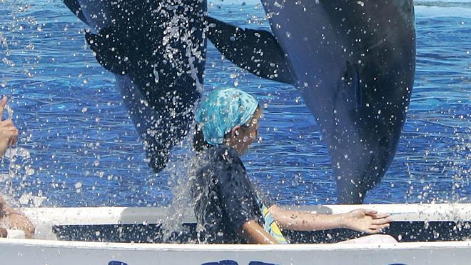 Hallan muerto a un entrenador de delfines acusado de maltrato animal