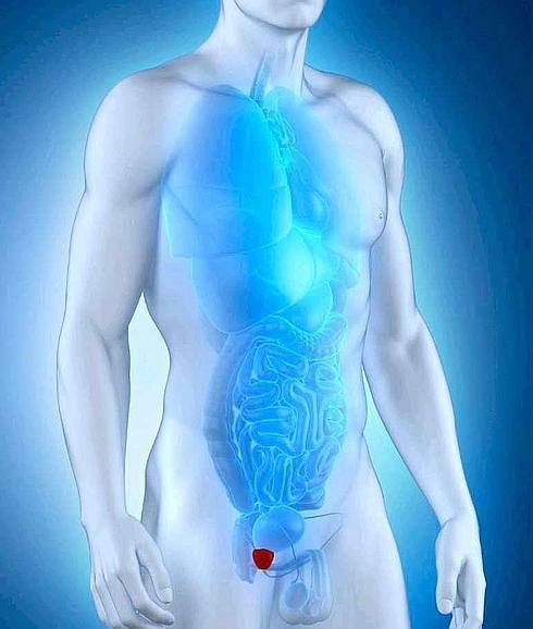 la prostata afecta el ano