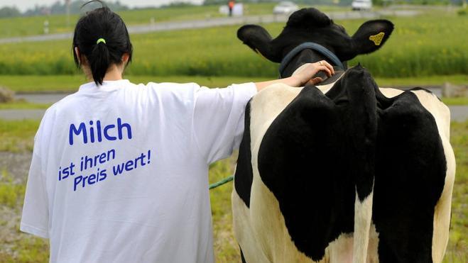 Bruselas ofrece otros 500 millones de ayuda al sector lácteo