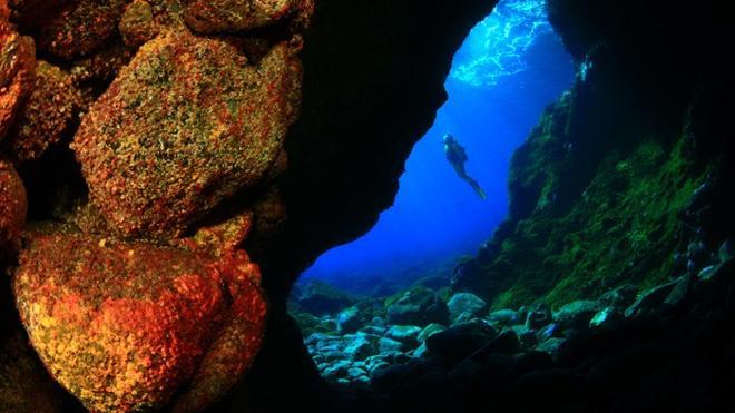 Los mejores fondos marinos de España para los amantes del buceo