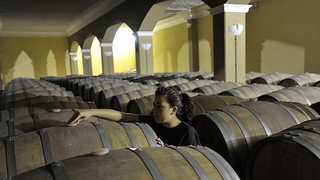La Ruta del Vino Ribera del Guadiana, Mejor Iniciativa Enoturística del país