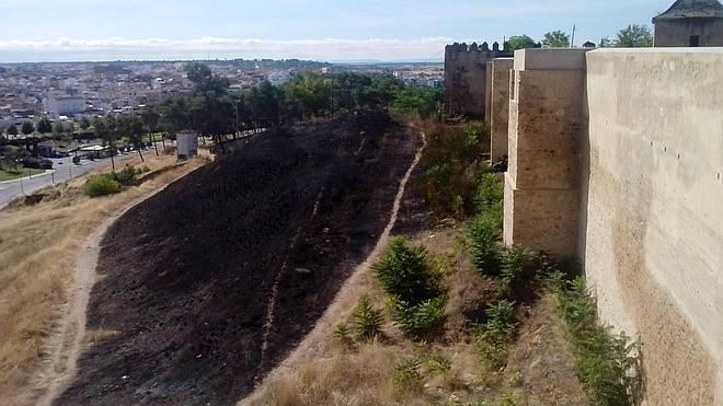 El fuego quema una hectárea de pastos en la ladera de la Alcazaba sin dañar la muralla