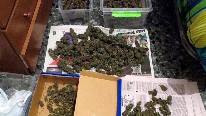 Tres detenidos por cultivo y distribución de marihuana