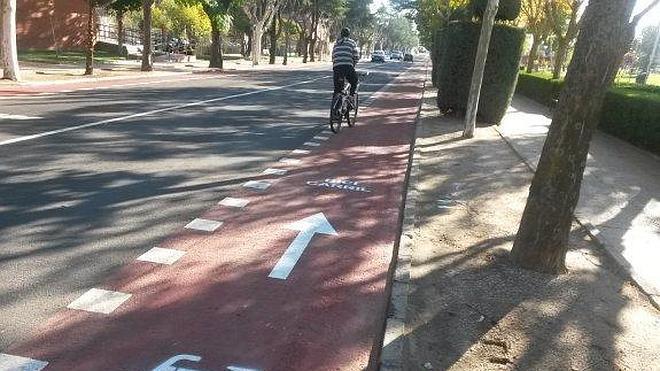 Villanueva ya cuenta con su primer tramo de carril bici