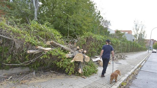 El 112 atendió 5.500 llamadas y 96 accidentes durante el temporal