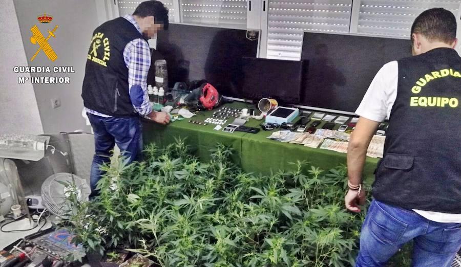 19 detenidos por tráfico de drogas en las Vegas Altas del Guadiana