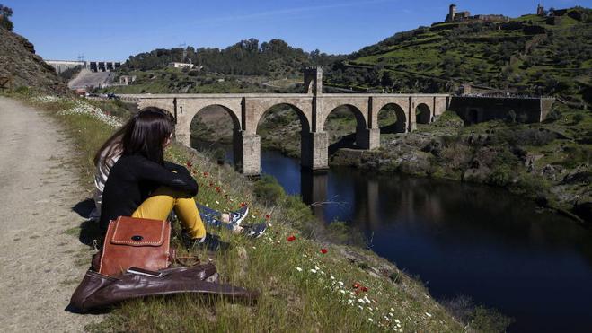 24 empresas optan a la licitación del proyecto del nuevo puente de Alcántara