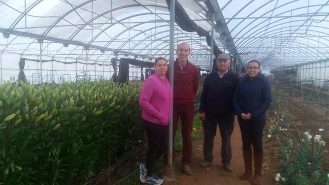 «Los tulipanes que sembramos en Alconchel no envidian a los de Holanda»
