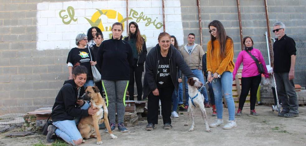 El Refugio de Brown ya no alberga a los perros abandonados