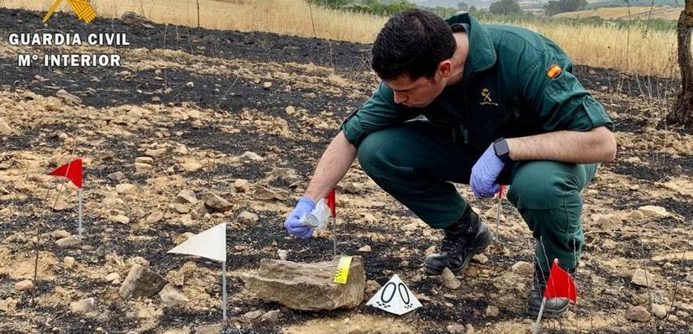 La Guardia Civil detuvo e investigó 38 personas por su implicación en incendios forestales