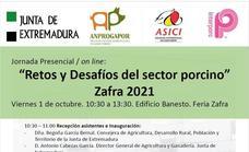 La Junta desarrolla una jornada técnica sobre 'Retos y Desafíos del sector del porcino'